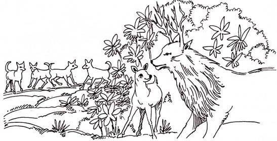 हिरन का बच्चा और बारहसिंगा - बच्चों की कहानियाँ Hiran barahsinga bachchon ki kahani