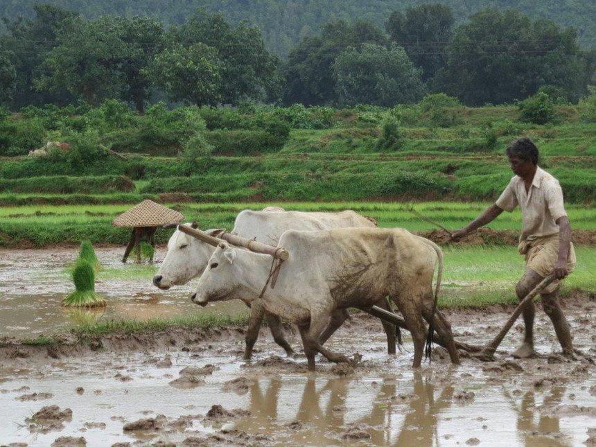 essay on bharat ke gaon in hindi