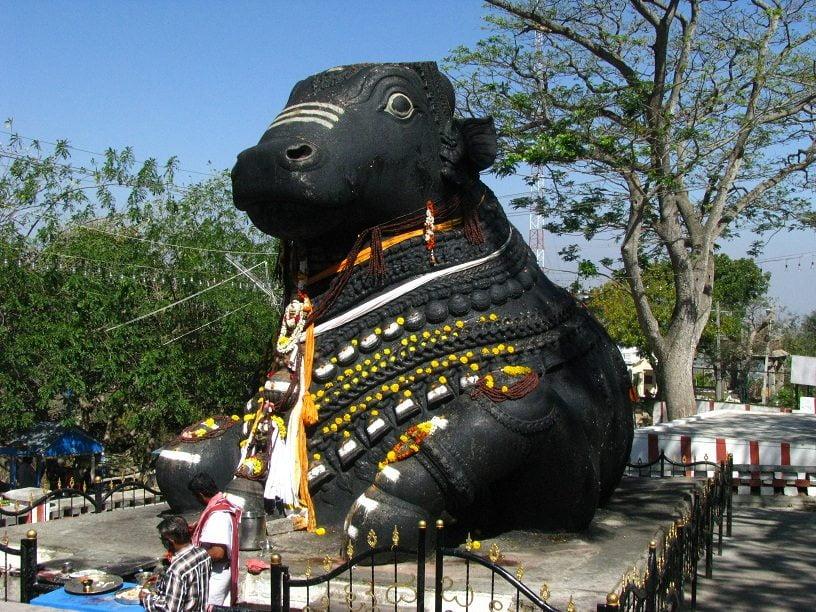Shiva ka vahan Nandi bail