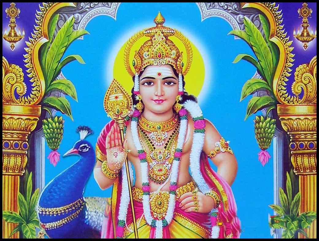Kartikeya ka vahan mor
