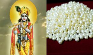 Kya Sach Mein Sri Krishna Ne Boye The Zameen Mein Moti