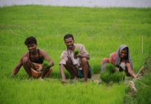farmers happy after loan waived off