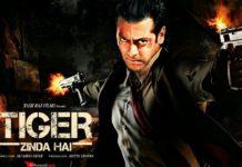 Tiger Zinda hai- Fan Made Poster