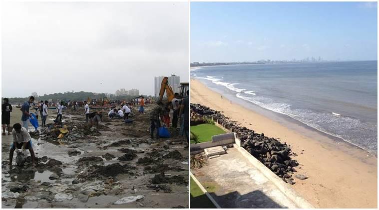अद्भुत उपलब्धि! मुंबई की 'स्वच्छ भारत' सैनिकों ने वर्सोवा समुद्र तट को किया कचरे से मुक्त