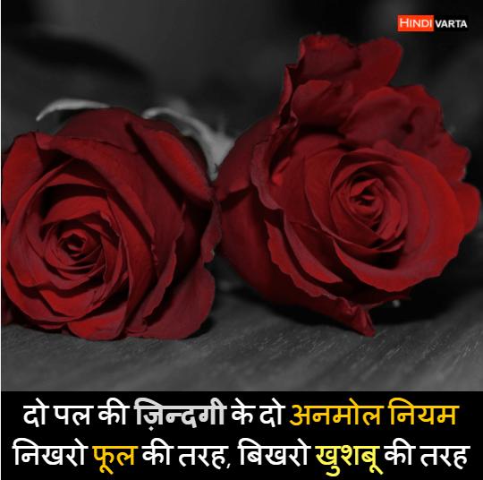 image status whatsapp