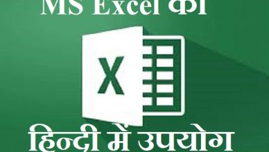 MS Excel layout in Hindi
